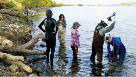 River Corridor and Watershed Biogeochemistry